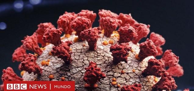 Los virus mortales que desaparecieron sin dejar rastro