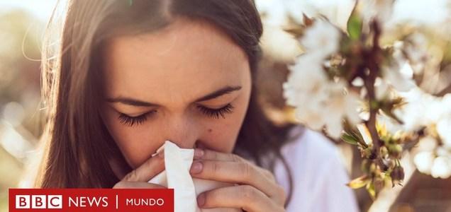 Las razones por las que con algunas enfermedades desarrollamos inmunidad permanente y con otras no (y la gran interrogante sobre la covid-19)