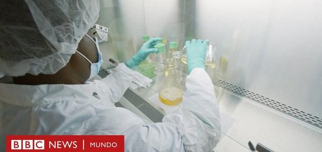 Cómo funciona el bamlanivimab, el primer medicamento diseñado específicamente contra la covid-19 – BBC News Mundo