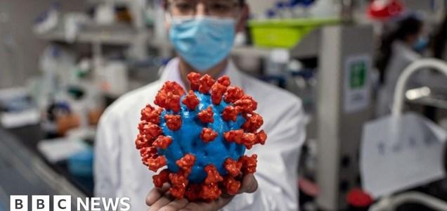 Coronavirus variants and mutations: the science explained