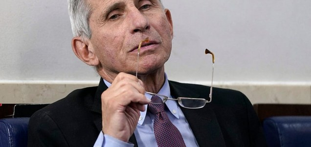 Anthony Fauci predicts when America will return to normal from coronavirus
