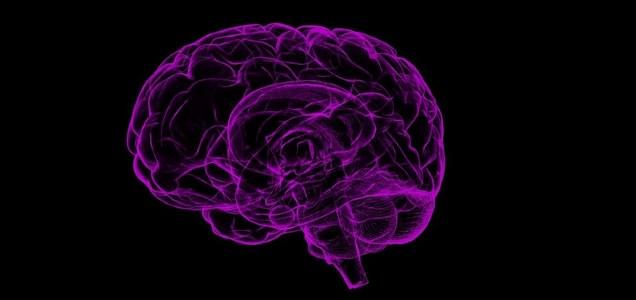 Covid-19 potrebbe causare danni cerebrali anche se il virus non è nel cervello