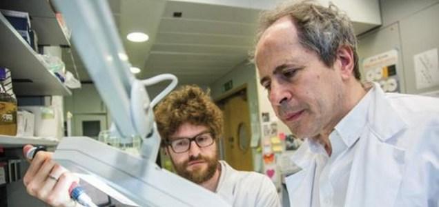 """Crisanti: """"Coronavirus più debole? Solo chiacchiere, non è scienza"""""""