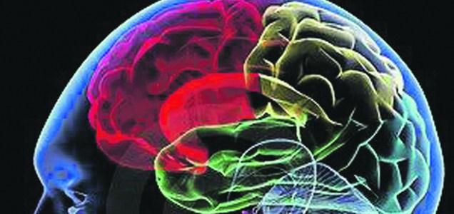 Ecco come il Coronavirus colpisce il sistema nervoso: tutti gli effetti sul cervello umano