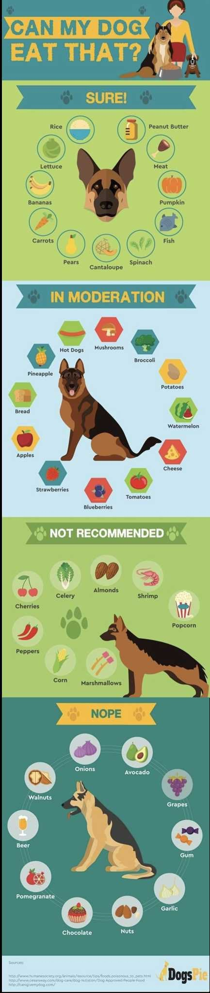 Foods dogs should/shouldn't have